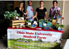 Weekly student farm produce sale