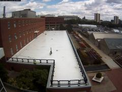 Ready for green roof construction