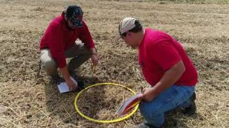 HCS 3100 – Introduction to Agronomy: Harvest Lab (with audio)