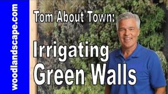 Irrigation: Creating and irrigating a green wall
