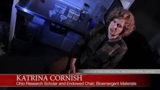 CFAES Faculty Profile: Katrina Cornish