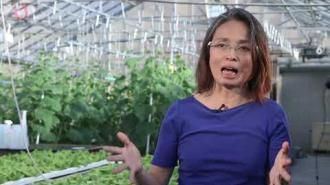 Chieri Kubota: Controlled Environment Plant Systems