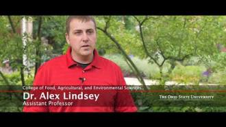 Sustainable Plant Systems: Agronomy