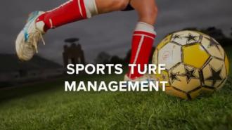 Sports Turf Management
